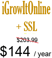 iGrowItOnline Secure Website Hosting - 10GB - SSL