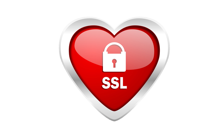 Secure Website SSL Grow It Online